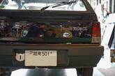 DSC00712s.jpg